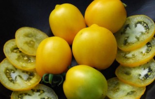 Plum Lemon Tomato