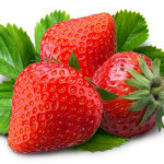 Budidaya Strawberry